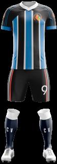 Camisa Esportiva totalmente editável - Futebol, Futsal -  Modelo Tigre Manga Raglã