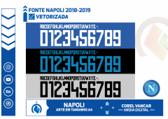 Fonte Napoli 2018-2019